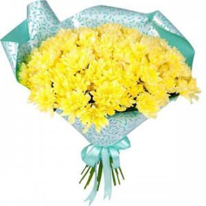 21 желтая хризантема